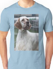 pointer dog Unisex T-Shirt