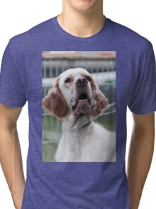 pointer dog Tri-blend T-Shirt