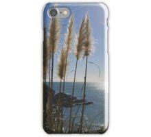 winter in auckland iPhone Case/Skin