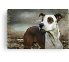 Which way is home Canvas Print