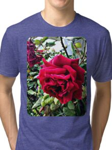 Red Roses Springtime in the Garden Tri-blend T-Shirt