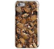Crabs! iPhone Case/Skin