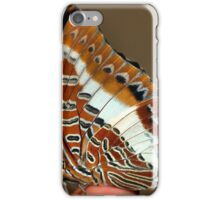 WHITE BARRED EMPEROR - CHARAXES brutus natalensis iPhone Case/Skin