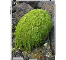 she had green hair iPad Case/Skin