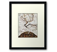 Egon Schiele - Small Tree in Late Autumn (1911)  Framed Print