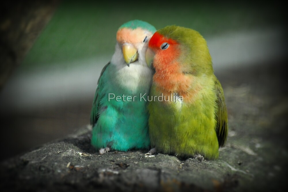 It Must Be Love, Love, Love ... by Peter Kurdulija