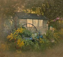 Garden Shed by trish725