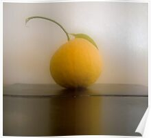 Grapefruit Reflected Poster