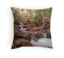 Mersey River - Overland Tack Tasmania Throw Pillow