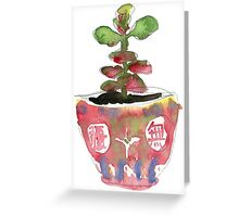 Little succulent in a Chinese teacup Greeting Card