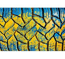 Colorful painted tire texture in detail - Grunge style multicolored background Photographic Print