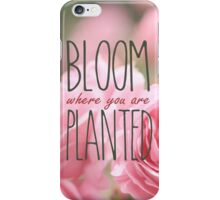 Bloom Where You Are Planted Pink Roses 2 iPhone Case/Skin