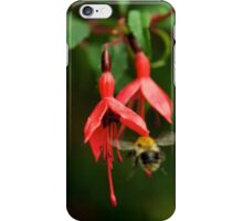 Fuchsia at Loch Na Fooey (wide) iPhone Case/Skin