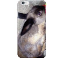 Happy Easter! from Blueberry Bunny iPhone Case/Skin