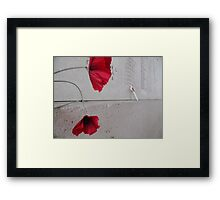 Poppy of Rememberance Framed Print