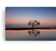The Twilight Tree - Victoria Point Qld Australia Canvas Print