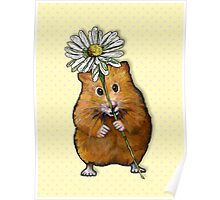 Hamster with Big Daisy, Original Art, Dotted Background Poster