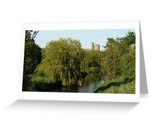 Willow Over The Eden Greeting Card