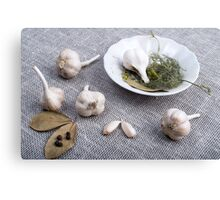 Garlic and spices on a gray fabric background Canvas Print