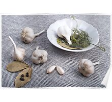 Garlic and spices on a gray fabric background Poster
