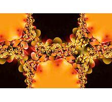 Mango Bouquet Photographic Print
