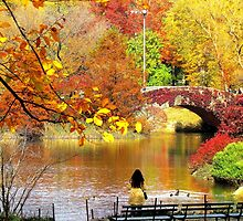 Autumn Paradise, Central Park - NYC by Alberto  DeJesus