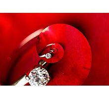 Diamond and Roses Photographic Print