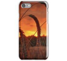 Summer evening set on fire iPhone Case/Skin