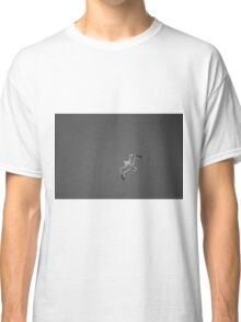 Flying And Dreaming Classic T-Shirt