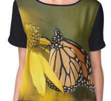 Fall Monarch 2016-5 Chiffon Top