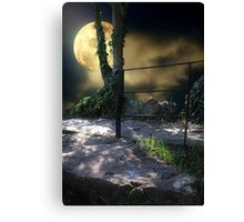 Walking in Moonlight Canvas Print
