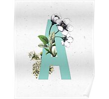 Botanical Alphabet - Letter 'A' Poster