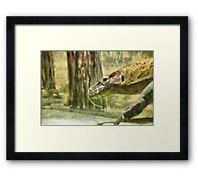 Moving slowly and deliberately Framed Print