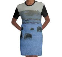 Elephant Family in Blue Graphic T-Shirt Dress