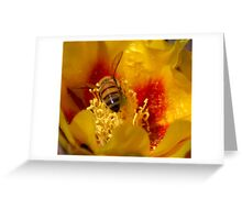 I will melt into it (Opuntia humifusa) Greeting Card