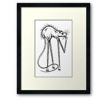 Funky Rat Framed Print