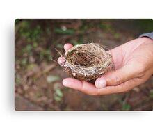 Tiny Nest Canvas Print