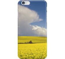 Countryside landscape iPhone Case/Skin