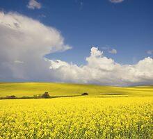Countryside landscape by lightwanderer