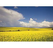 Countryside landscape Photographic Print