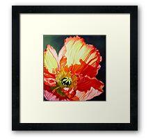 Popping Poppies Framed Print