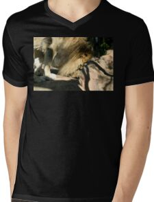African Lion Mens V-Neck T-Shirt