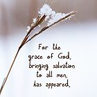 Grace brought Salvation ~ Titus 2:11 by Robin Clifton
