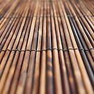Sticks. by godtomanydevils
