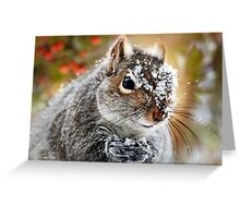Wild Expedition Squirrel Art Greeting Card
