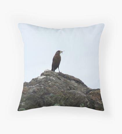Bird on a Rock Throw Pillow