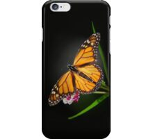 Open Wings Monarch Butterfly iPhone Case/Skin