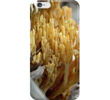 Coral Fungi iPhone Case/Skin