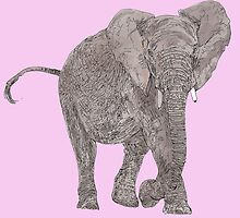 elephant in pink by VOO MOO