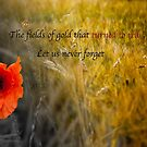 The fields of gold - rememberance by PhotoLouis